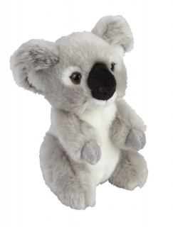 Suma Koala (Two Sizes)